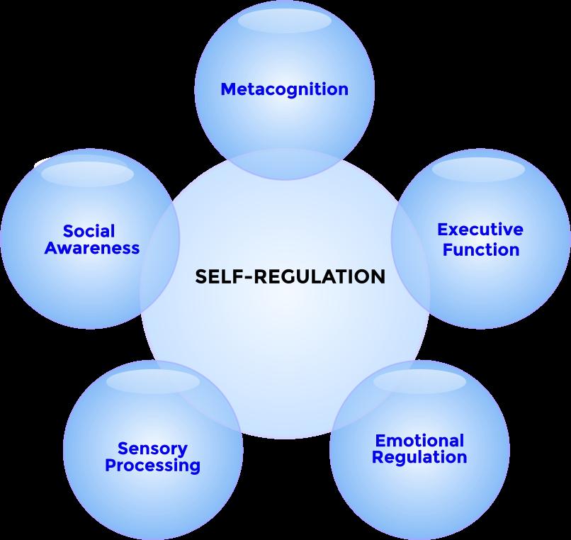 Self-Regulation Chart